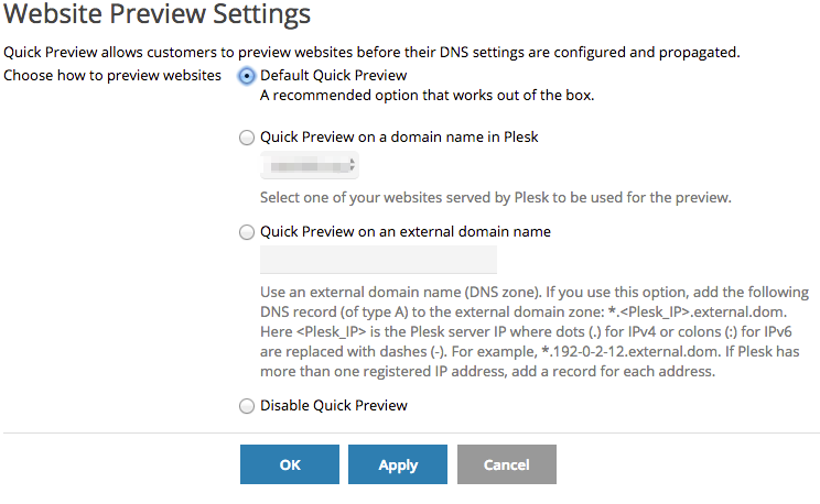 How can I test or preview my website before switching DNS